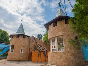 Симферополь зоопарк