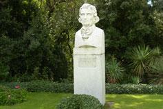 Никитский ботанический сад Стевен