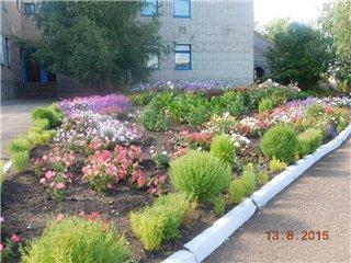 Детский сад №36 Аленький цветочек