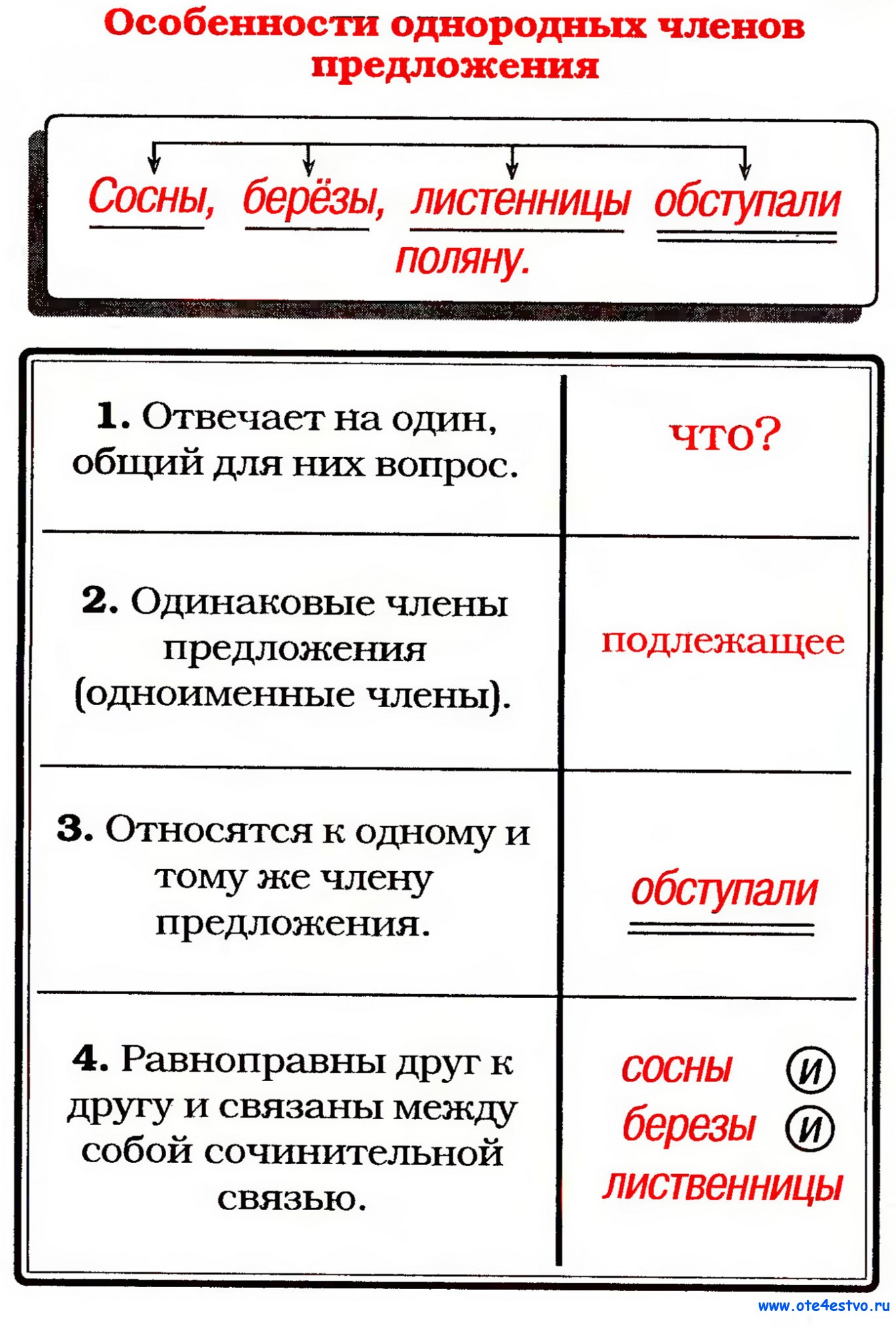 tipi-chlenov