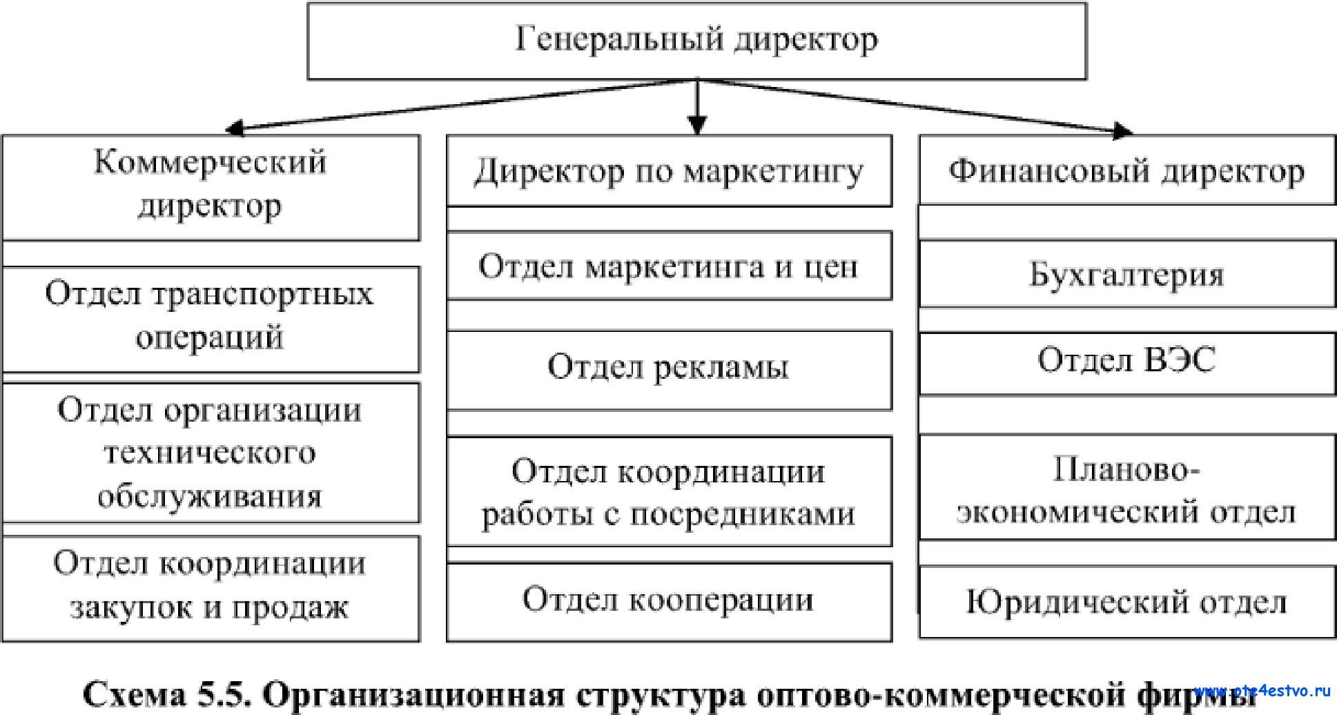 Структура оптово-розничной торговой компании схема