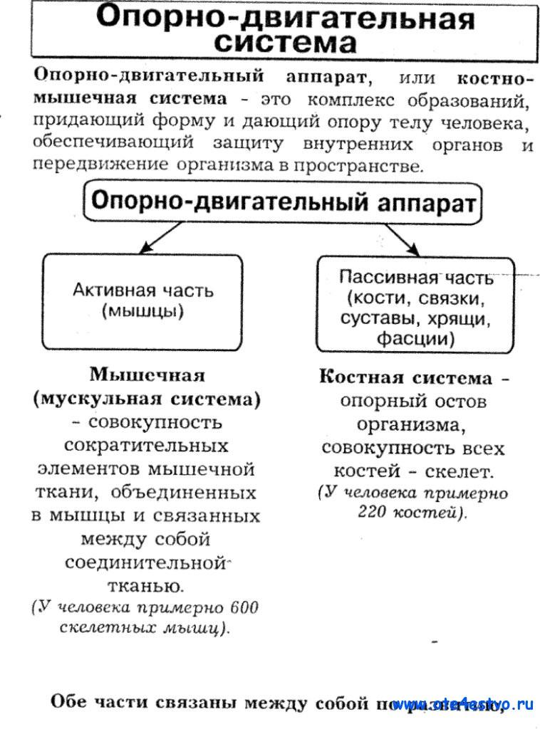 seks-kseniya-sobchak-i-timati