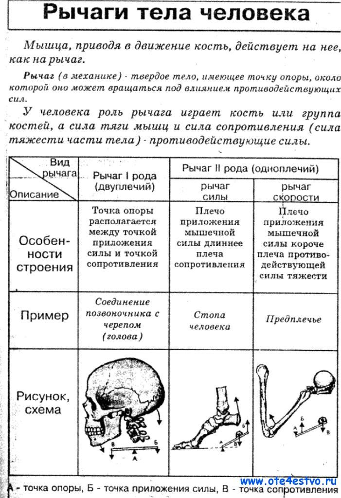 схема и таблица для вышивки