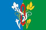 Флаг Лакинская фото